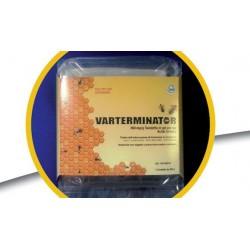 VARTERMINATOR